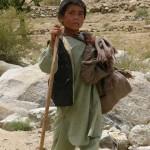 کار کودکان